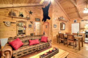 simply-serene-cabin-livingroom-kitchen-001