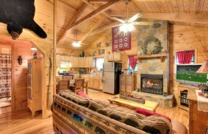 simply-serene-cabin-livingroom-kitchen-002